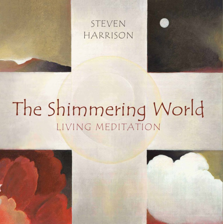 The Shimmering World